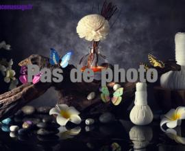 spa la part des anges naturiste au coeur de Lyon